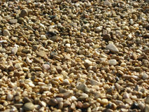 Pebbles on beach Royalty Free Stock Images
