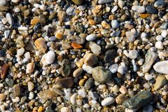 Pebbles on a beach. Color pebbles on a beach Royalty Free Stock Images