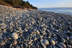 Pebbles on beach Stock Image