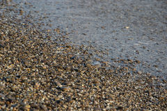 Pebbles on the beach as background Royalty Free Stock Photo