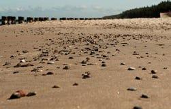 Pebbles on the beach 1 Stock Image