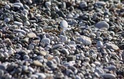Pebbles on the beach Royalty Free Stock Photos