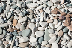 Pebbles beach. On Cyprus on the seashore Stock Images