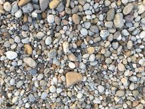 Pebbles on the beach. Different pebbles near the sea Royalty Free Stock Photos