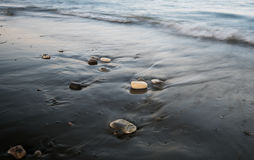 Pebbles in the beach and flowing sea water Royalty Free Stock Photo