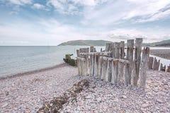 Porlock weir beach in summer exmoor. Pebbles on the beach at porlock weir in summer exmoor somerset uk Royalty Free Stock Photo