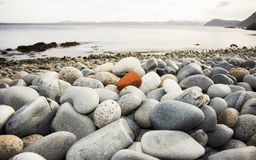 Pebbles on the beach. Pebbles on the shore of the Arctic Ocean , multicolored beach Stock Photos