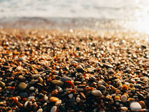Pebbles on the beach. Texture of the sea shore. The Adriatic Sea Royalty Free Stock Images