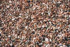 Pebbles on the beach. Texture of the sea shore. The Adriatic Sea Stock Photography