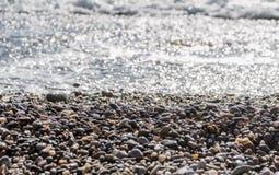 Pebbles bevattnar in Arkivbilder