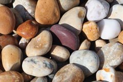 Pebbles. Bright colourful pebbles on a Devon Beach, in England, UK. Shows the different types of stones found on the beach royalty free stock photography