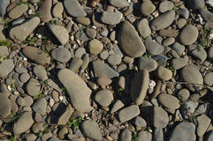 Pebbles catching sun on the riverbanks Stock Images