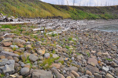 Pebbles and cobbles on the banks of river. Stock Photos