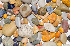 Pebbles colored. Stock Photography