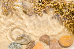 Pebbles composition on stone Stock Photography