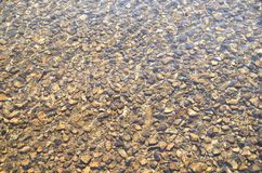 Pebbles in creek or stream flowing water Stock Image