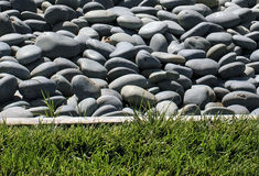 Pebbles and grass. The image green grass with stone, grass with rock,background Stock Photo