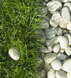 Pebbles and green grass Royalty Free Stock Photography