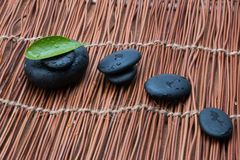 Pebbles and green leaf Royalty Free Stock Image