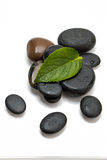 Pebbles and green leaf Stock Photography