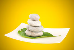 Pebbles and green leaf in white plate Royalty Free Stock Images