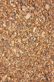 Pebbles on the ground as the background Royalty Free Stock Photography