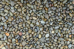 Pebbles on the ground Royalty Free Stock Images