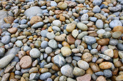 Pebbles. Many various colored pebbles on a beach Stock Photos