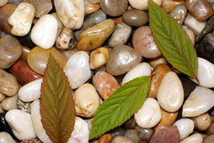Pebbles,minerals. Royalty Free Stock Photography