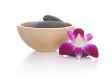 Pebbles and Orchid Royalty Free Stock Image
