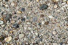 Pebbles på en strand Fotografering för Bildbyråer