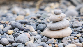 Pebbles på en strand Royaltyfria Foton