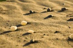 Pebbles på sanden Fotografering för Bildbyråer