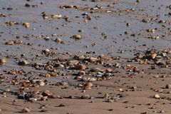 Pebbles på stranden Royaltyfria Bilder