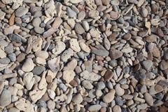 Pebbles på stranden Royaltyfria Foton