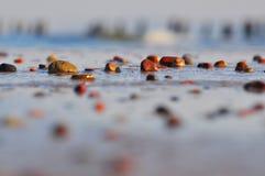 Pebbles på stranden arkivfoton