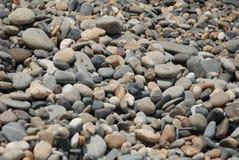 Pebbles p? stranden arkivbild