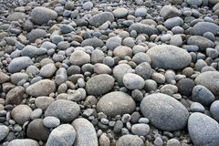 Pebbles on Pebble Beach Royalty Free Stock Photography