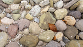 Pebbles and red autumnal leaves Stock Photo