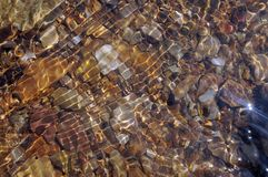Riverbed Pebbles Wave. Pebbles on a river bed. Reflections and ripples on the surface. riverbed pebbles wave water wet river nature stock images