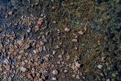 Pebbles and Rocks in running water royalty free stock photography