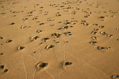 Pebbles in the Sand 1 Royalty Free Stock Images