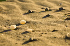 Pebbles on sand Stock Image