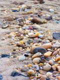 Pebbles in the sand. Smooth pebbles washed up on a sandy beach Stock Photo