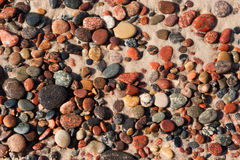 Pebbles on the sand Stock Images