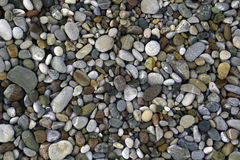Pebbles on sea shore. Grey and colourful pebbles on sea shore Royalty Free Stock Photography