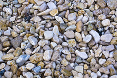 Pebbles on sea shore Royalty Free Stock Images