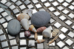 Pebbles and seashells  on the tile, paving. Stones, shells and urban life style. Pebbles and seashells  on the tile, paving. Stones, shells and urban life Royalty Free Stock Images