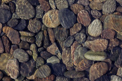 Pebbles in shallow water Stock Photos