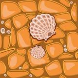 Pebbles and shells Stock Image